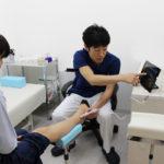 超音波画像診断装置(エコー)